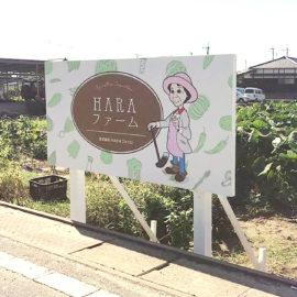 デザイン制作事例:福岡県柳川市HARAファーム様 ロゴ・看板をデザインしました。